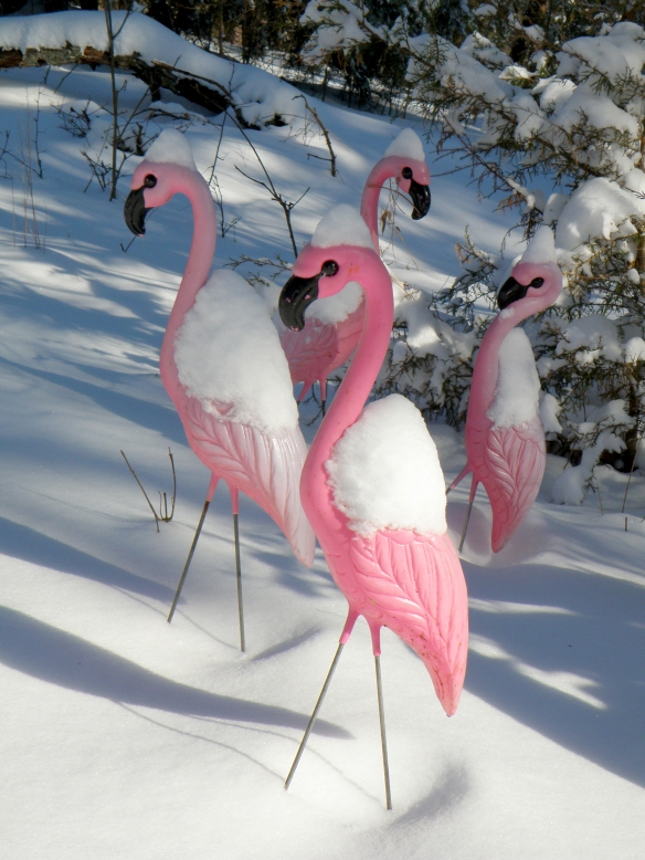 I love kitsch and I love it unusual places. I have had lawn flamingoes in the front lawn of every home I have ever owned.