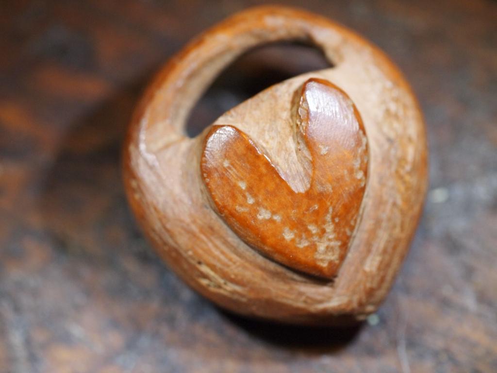 Apricot Pit
