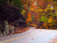 Here's that same angle up the hill on my favorite road. I struggled to choose which details to focus on, even so the blurring gives the feel of racing up the road amidst the falling leaves.