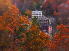 Looking through the trees you can see the Pink House. This shot really gives a sense of miniaturization created by the tilt shift lens.