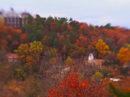From this vantage point a church steeple rises above the treetops.